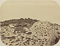 Comissao-Geologica-do-Imperio-Album1-Foto020-Getty (cropped).jpg