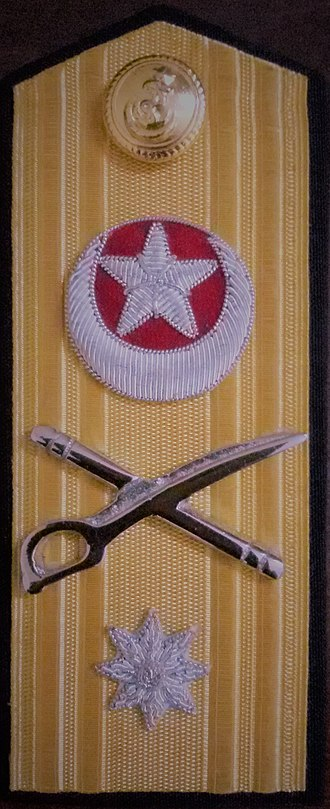 Pakistan Marines - Image: Commodore insignia full