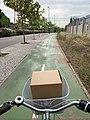 Con un paquete en la cesta de la bici por el Tercer Cinturón, Zaragoza.jpg