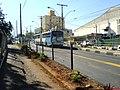 Corredor de ônibus das Amoreiras - Liga o Centro ao Bairro Campos Elisios - panoramio - Paulo Humberto.jpg