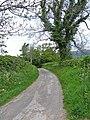 Country lane - geograph.org.uk - 1322704.jpg