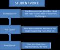 Court Moor Student Voice.png