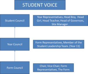 Court Moor School - A visual breakdown of the Student Voice System