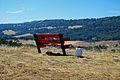 Cowpie Mano Seca Bench.jpg