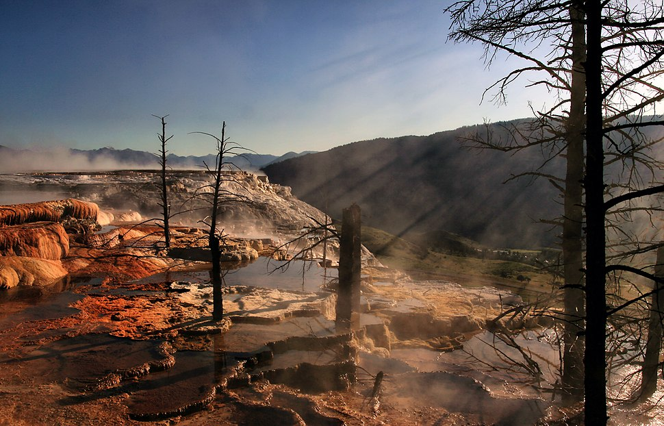 Crepuscular rays and Dead trees at Mammoth Hot Springs