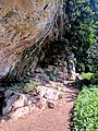 Creswell Gorge, Creswell Craggs, Notts (11).jpg