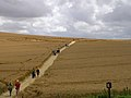Crop circle south of Avebury henge, Wiltshire - geograph.org.uk - 31914.jpg