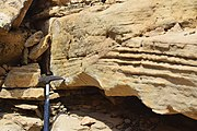 Cross beds transitionnal shoreface morocco.jpg