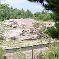 Croxden Quarry - geograph.org.uk - 223728.jpg