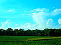 Cumulonimbus Clouds - panoramio (5).jpg