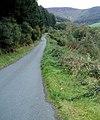 Cwm Hirnant Road - geograph.org.uk - 644524.jpg