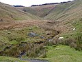 Cwm Stalwyn, above the Afon Tywi, Powys - geograph.org.uk - 1086692.jpg