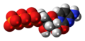 Cytidine triphosphate anion 3D spacefill.png