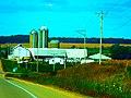 Dairy Farm between Lodi and Dane - panoramio.jpg