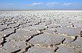 Dasht Kavir - Haj Aligholi desert - panoramio.jpg