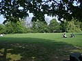 Deans Field - geograph.org.uk - 417050.jpg