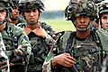 Defense.gov News Photo 070829-F-0199D-061.jpg