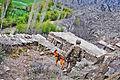 Defense.gov photo essay 120412-A-8536E-423.jpg