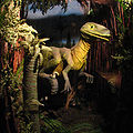 Deinonychus-01-ZOO.Dvur.Kralove.jpg