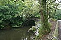 Denham Bridge in the Summer - geograph.org.uk - 224645.jpg