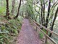 Dippol Burn path, Auchinleck Estate.jpg