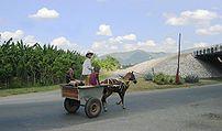 A horsecart in Santiago de Cuba.