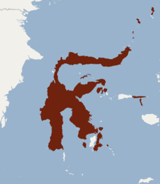 Distribution of Rousettus celebensis.png