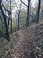 Disznókő felé - panoramio.jpg