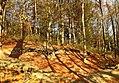 Doline in Steilstufe des Muschelkalks zwischen Bad Berka und Saalborn 02.jpg