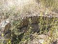 Dolmen de La Velilla 4.jpg