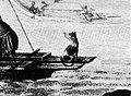 Double canoes. Tipaerua, 1769-71 (crop of dog).jpg