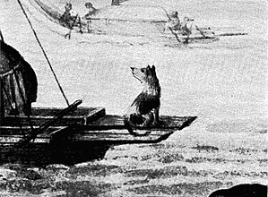 Tahitian Dog - Image: Double canoes. Tipaerua, 1769 71 (crop of dog)