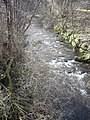 Downstream Dullan Water - geograph.org.uk - 1200303.jpg