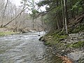 Downstream from High Falls - panoramio.jpg