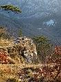 Draga Sant'Elia,un piccolo paesaggio - panoramio.jpg