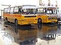 Duple Dominants FBY 746 EBY 596, Senglea Terminus, Routes 300 - 3. Feb 2011 - Flickr - sludgegulper.jpg