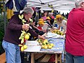 During the Lemon Festival at Monterosso al Mare (4711601765).jpg