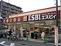ESBI Kiyose.jpg