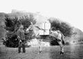Ein mit drei Kisten beladenes Maultier vor der Burg bei Sitten - CH-BAR - 3239711.tif