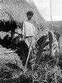 En s.k. bogotá -indian (Nordenskiölds . terminologi) från Veraguas. Mannens namn Belisario - SMVK - 004288.tif