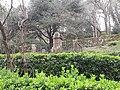 English Cemetery of Monte Urgull - El Cementerio de los Ingleses - Le cimetière des Anglais - المقبرة الانجليزية photo6.jpg