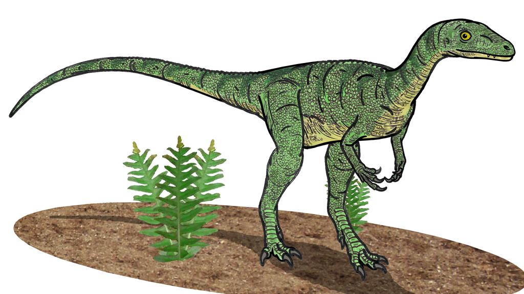 Eoraptor resto. 01
