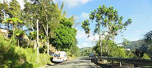 Guaraguao - Scene in Barrio Guaraguao at PR-515 Westbound
