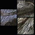 Europa - February 1999 (16356469196).jpg