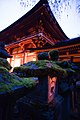 Exterior of Kasuga-taisha at night. Nara, Nara Prefecture, Kansai Region, Japan.jpg
