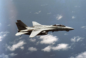 F-14A VF-24 right side view with AIM-7s and AIM-9s 1987.JPEG
