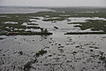 FEMA - 37963 - Aerial of levee in Louisiana.jpg