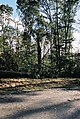 FEMA - 5119 - Photograph by Jocelyn Augustino taken on 09-25-2001 in Maryland.jpg