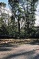 FEMA - 5119 - Photograph by Jocelyn Augustino taken on 09-25-2001 in Maryland.jpg