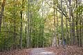 Fall on Boyds Hole trail (6276325448).jpg
